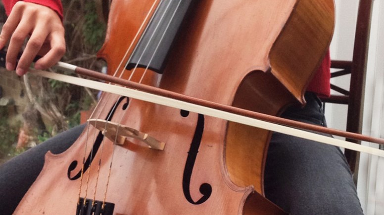 undefinedMarkneukirchen Cello lent by Mr and Mrs P Collins