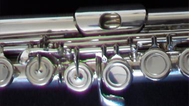 benslow music instrument loan scheme flute. Black Bedroom Furniture Sets. Home Design Ideas